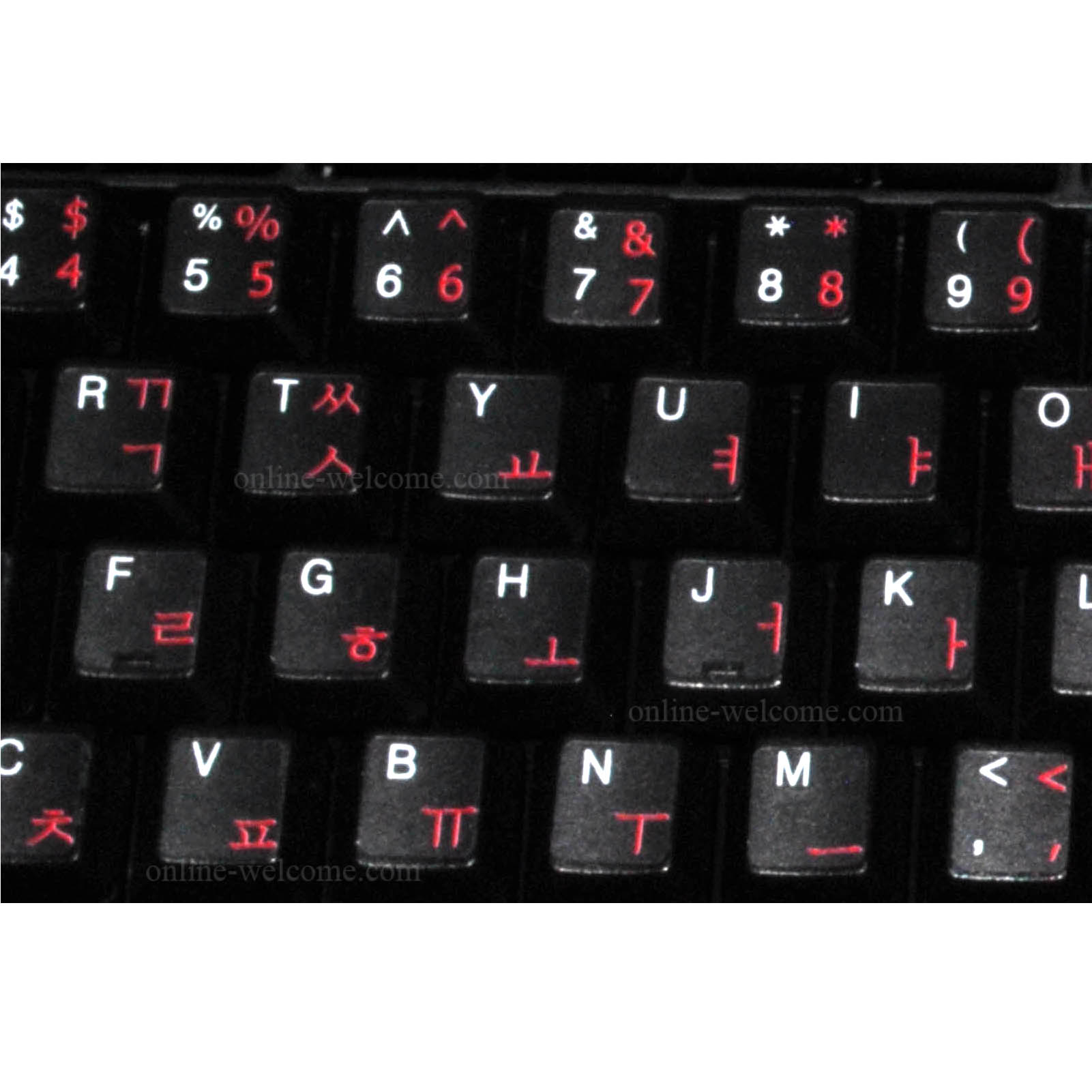 Online Shop 50pcs Korean Letters Alphabet Learning Korean Keyboard ...
