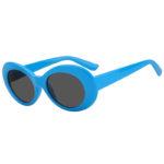 Retro Oval Goggles Thick Plastic Blue Frame Round Lens Sunglasses Smoke